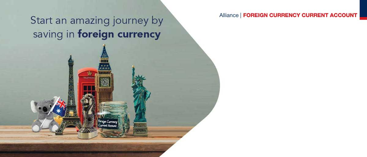 Foreign Currency Earmark Campaign